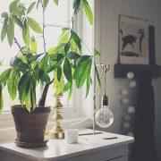 Industrialna mosiężna lampa stołowa Theo Watt&Veke